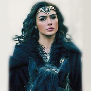 Wonder Women Diana Prince Black Shearling Long Coat areena design