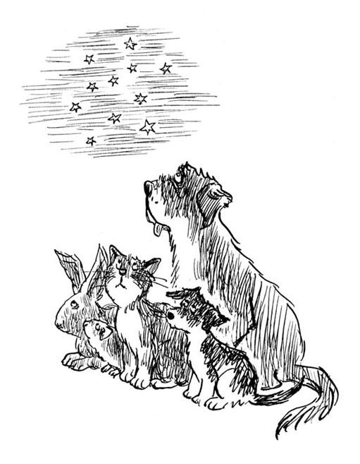 The Animal Shelter at Gardners Lane