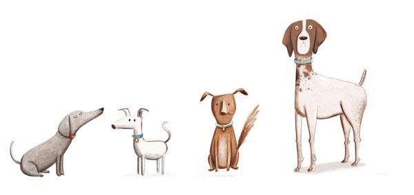 kristyna-litten_dogs