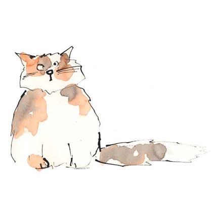 Sue Hellard- Cat Sketch