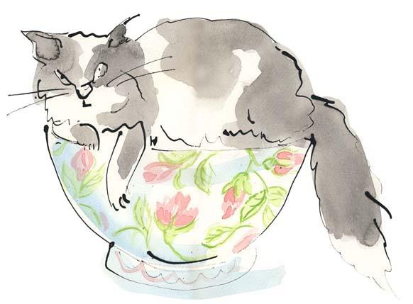 Sue Hellard- Cat in Bowl