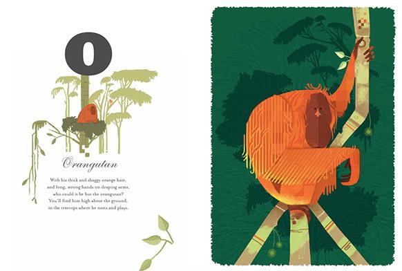 Graham Carter Alphamals A-Z Orangutan Big Picture Press