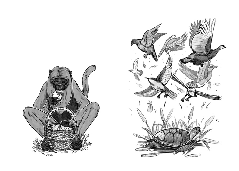 'Papa Bwa and Monkey Trouble' and 'The Singing Turtle' illustrated by Joe Lillington