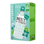 Mint & Citrus Cold Water Infusers ØKO 10 poser Te
