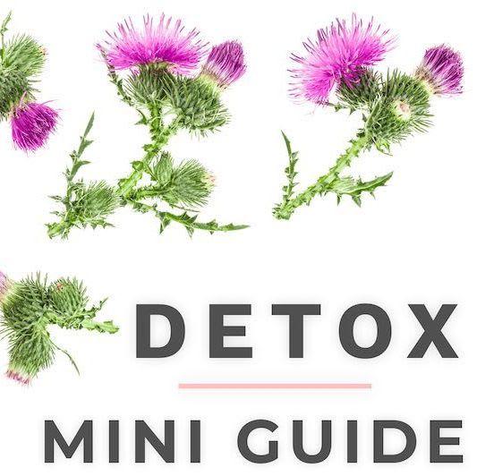 Detox Mini Guide