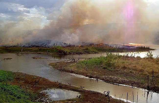 Carbono revela queimadas