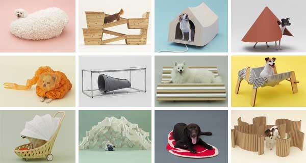 Arquitetura para cães