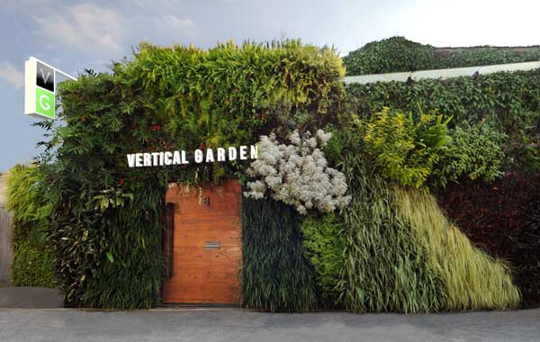 Jardins verticais em ambientes corporativos