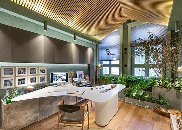 Design biofílico no home office