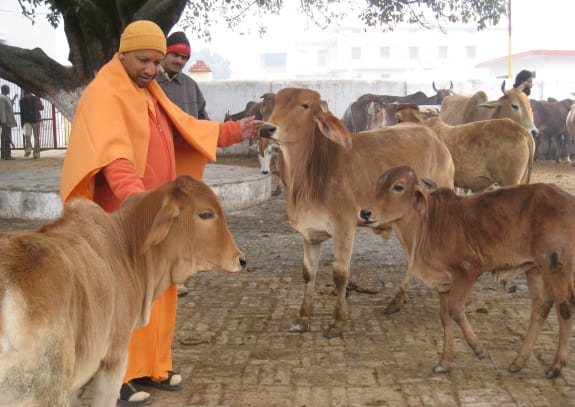 Yogi Adityanath and the Rise of Rabble-rousers