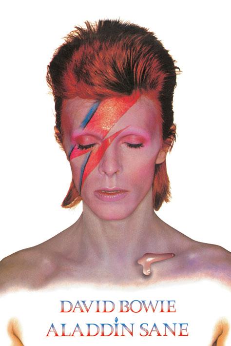 David Bowie: Aladdin Sane Portrait Poster