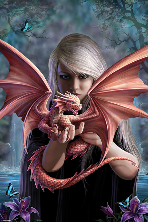 Anne Stokes: Dragonkin Portrait Poster