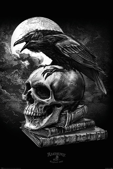 Alchemy: Poe's Raven Portrait Poster