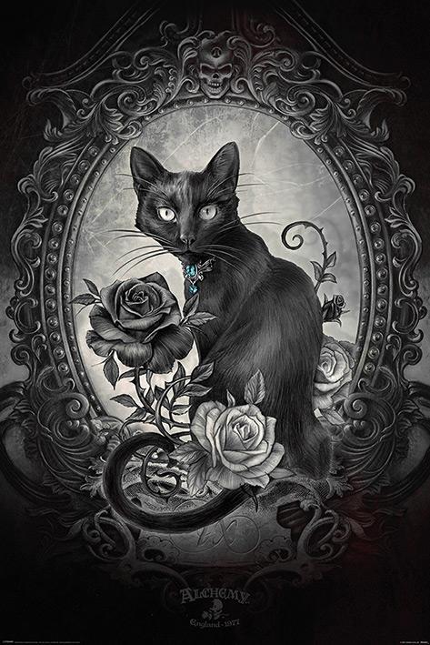 Alchemy: Paracelcus Portrait Poster