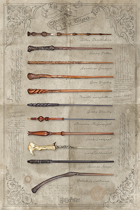 Harry Potter: The Wand Chooses The Wizard Portrait Poster