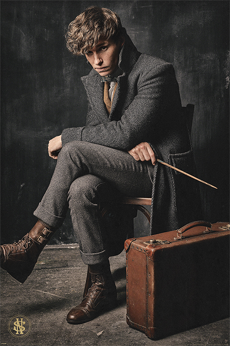 Fantastic Beasts The Crimes Of Grindelwald: Newt Scamander Portrait Poster
