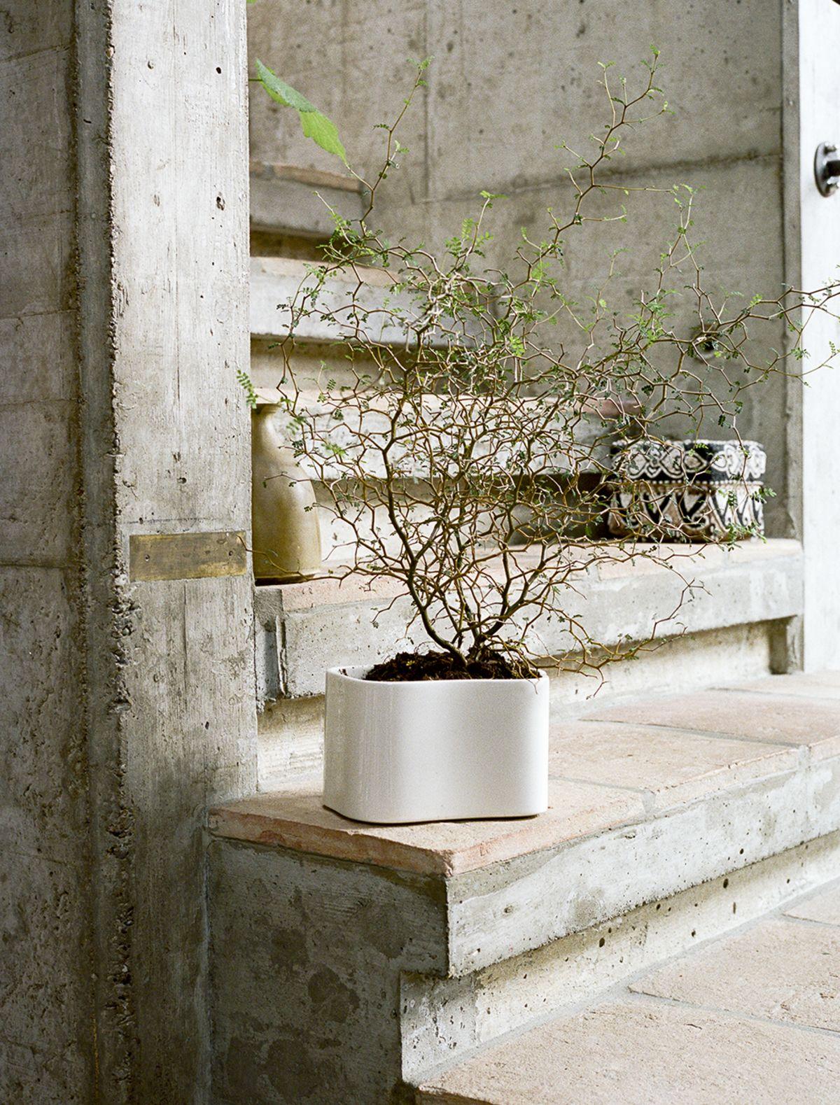 Riihitie Plant Pot A small white