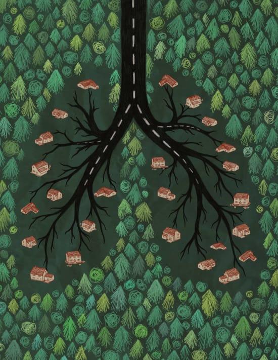 Illustration by Rachael Amber