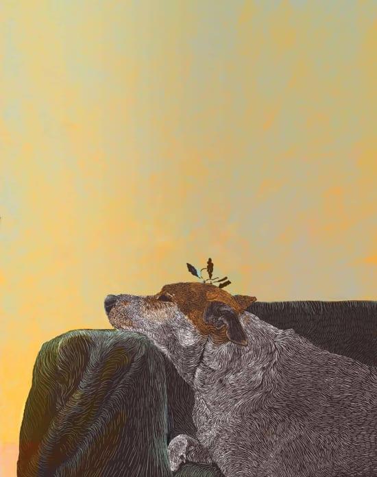 Illustration by Sharon Spitz