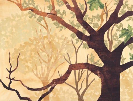 Illustration by Daniel Bueno