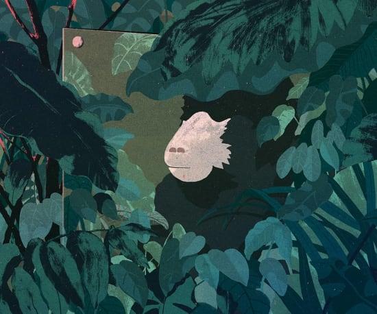 Illustration by Zaiwei Zhang