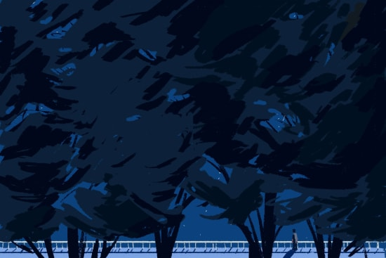 Illustration by Haolun Liu