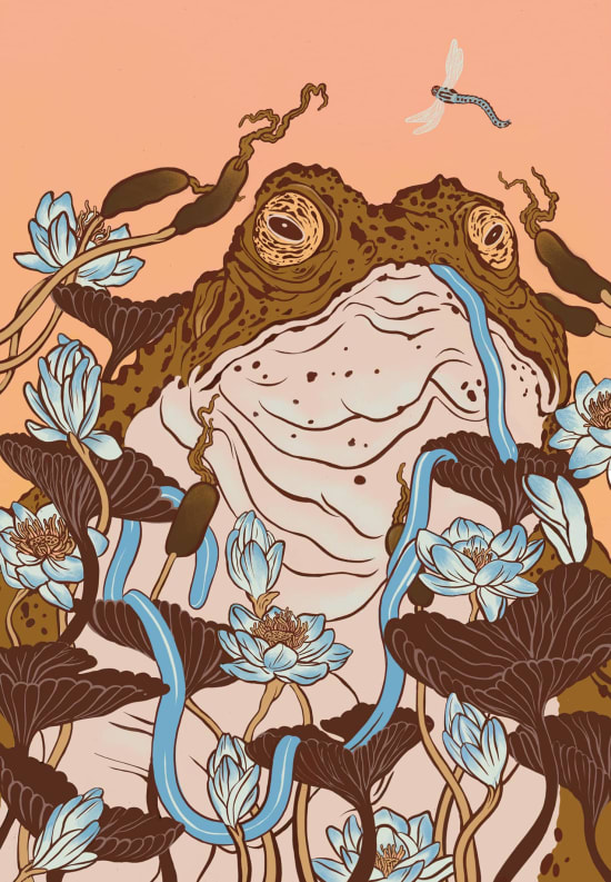 Illustration by Katie Mulligan