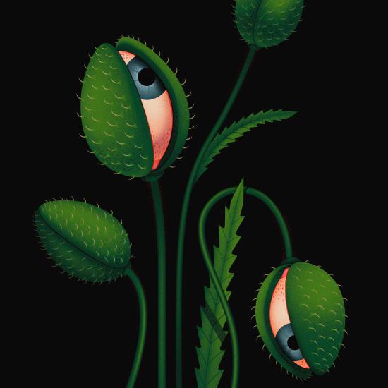 Illustration by Ana Miminoshvili