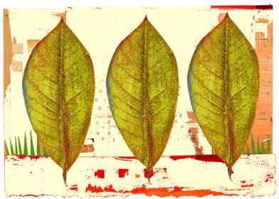 Tres Verdes