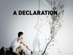 <em>A Declaration</em>, 2010