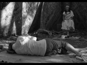 <em>PARDES (Orchard)</em>, 2014