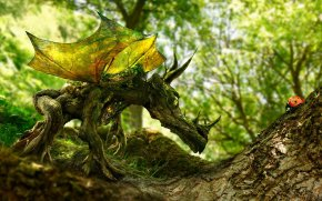 <em>The Wood Dragon and the Ladybird</em>