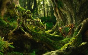 <em>The Moss Dragon and the Butterfly</em>