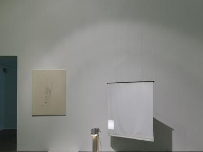 Ian Kiaer - Black tulip, glasshouse
