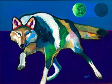 Coyote in the Moonlight