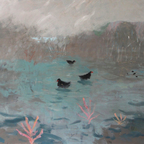 David Pearce - Marsh Hens