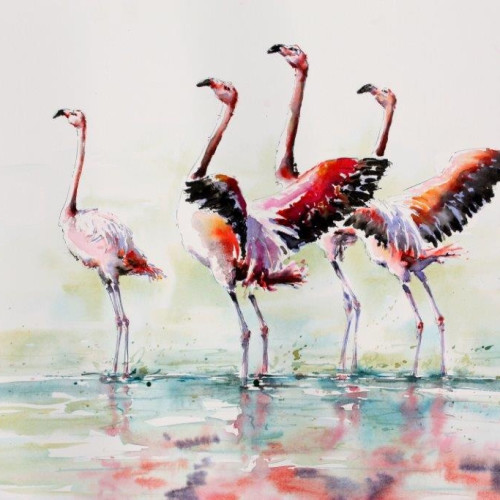 Julia Cassels - Flamingo's in the Morning Sun