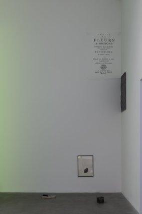Ian Kiaer  Black tulip, traité des ognions, 2012  acrylic, paper, ink, digital print, lighting gel, silk, cardboard  Frame: 46 x 41.3 cm / 18 1/8 x 16 1/4 ins Model: 5.1 x 33 x 25.4 cm / 2 x 13 x 10 ins Lighting gel: 14.3 x 15.2 x 14.3 cm / 5 5/8 x 6 x 5 5/8 ins text: 122 x 90 cm / 48 1/8 x 35 3/8 ins