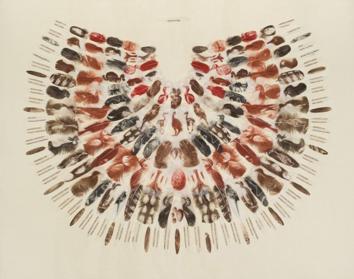 <span class=&#34;title_and_year&#34;><em>Cape of No Hope</em>, 2014<span class=&#34;title_and_year_comma&#34;>, </span></span><span class=&#34;medium&#34;>printed feathers<span class=&#34;medium_comma&#34;>, </span></span><span class=&#34;dimensions&#34;>94.9 x 120 cm<br/>37 3/8 x 47 1/4 in</span>