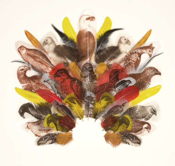<span class=&#34;title_and_year&#34;><em>Falconer's Headdress</em>, 2014<span class=&#34;title_and_year_comma&#34;>, </span></span><span class=&#34;medium&#34;>printed feathers<span class=&#34;medium_comma&#34;>, </span></span><span class=&#34;dimensions&#34;>43 x 45 cm<br/>16 7/8 x 17 3/4 in</span>