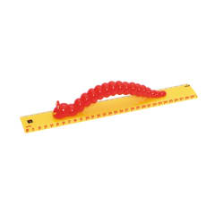 EC MY FIRST RULER 30cm CATERPILLAR