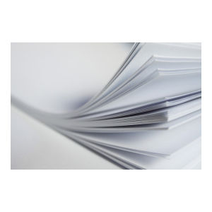 Canson Bristol Paper 250gsm 500x650mm