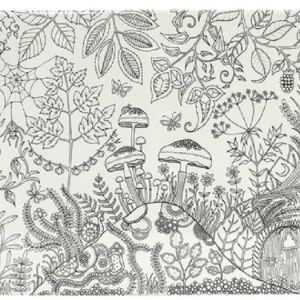 Johanna Basford Canvas Enchanted Forest 12 x 24 inch Forest_