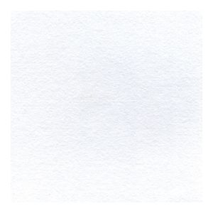 Shin Hosho Rice Paper 780 x 504mm White