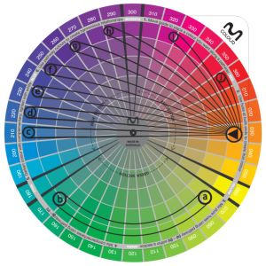 Moriarty Colour Wheel