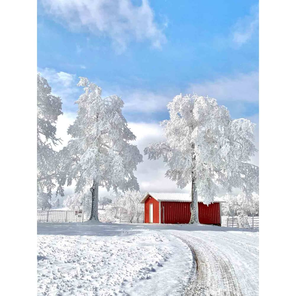 products/jay-mcdonald-red-barn-in-frosted-snow.jpg