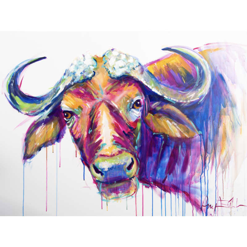Andre the Cape Buffalo