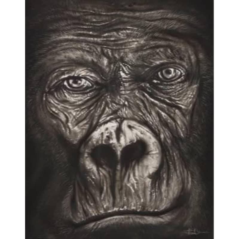products/clint-brannon-gorilla.jpg
