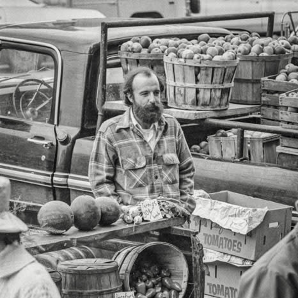 products/art-meripol-turnips-for-sale-1973.jpg