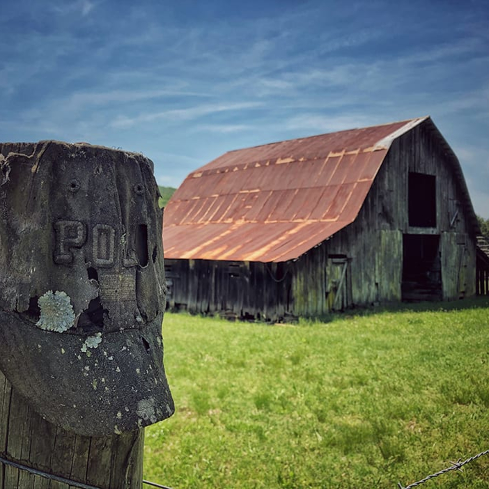 products/heather-chilson-polo-barn.jpg